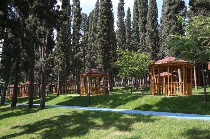 Halkalı Çamlık Piknik Alanı   damasturk Real Estate