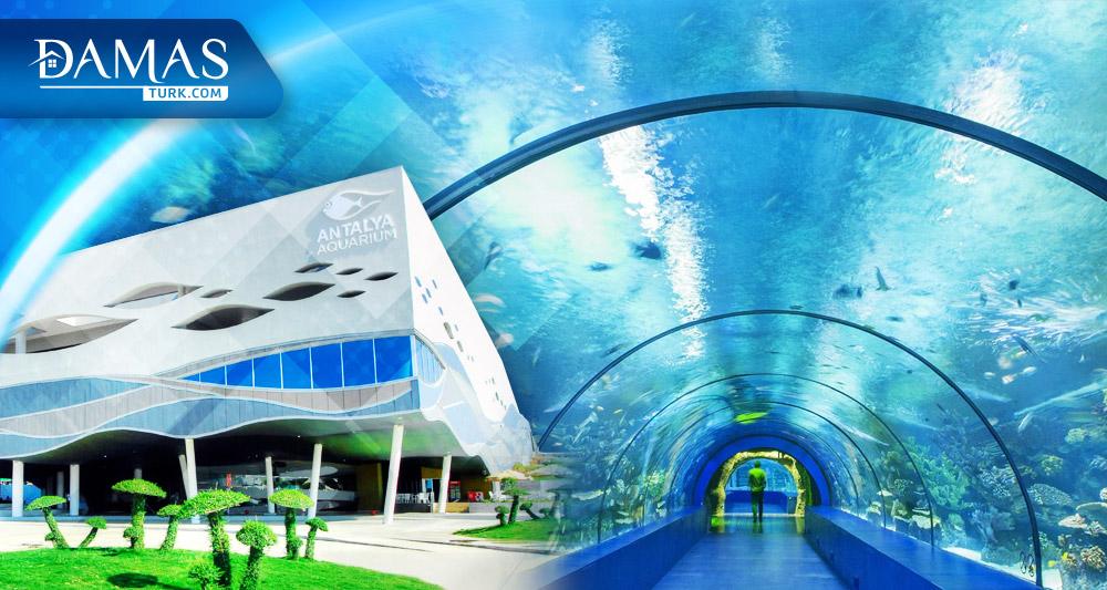 أنطاليا أكواريوم أكبر حوض أسماك في العالم